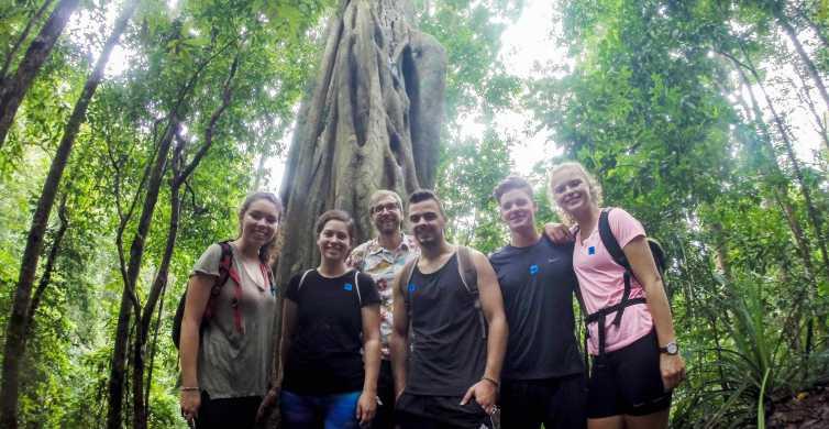 Chiang Mai: 6-Hour Doi Pui National Park Summit Hike