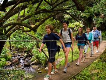 Big Island: Tages-Abenteuer mit Kohala-Wasserfälle. Foto: GetYourGuide