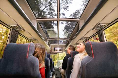 From Queenstown: Milford Sound Full-Day Trip by Bus & Boat