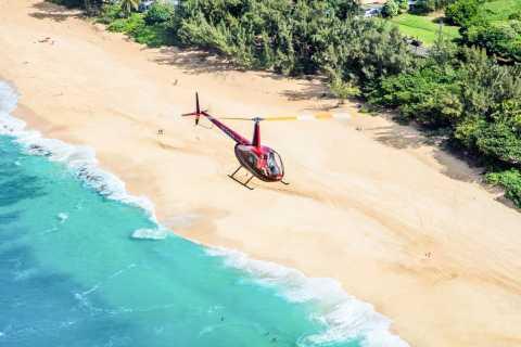 Oahu: tour in elicottero di 1 ora con porte aperte o chiuse