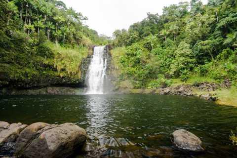 Big Island: Hilo Chocolate and Waterfalls Adventure