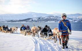 Tromsø: Reindeer Sledding & Feeding with a Sami Guide