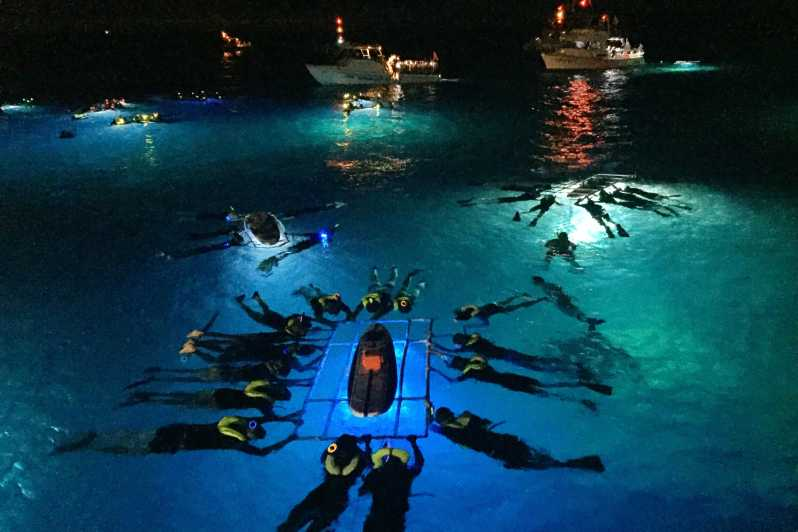 Island Night Manta Ray Adventure