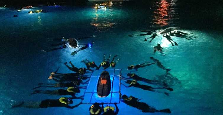 Big Island: Night Manta Ray Adventure
