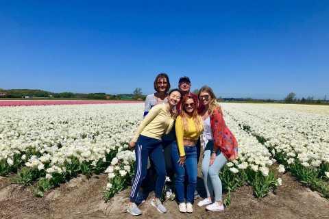 Alkmaar: Excursão de bicicleta pelos campos de flores de tulipas e primavera