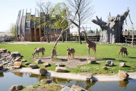 Rotterdam Zoo: Entrance Ticket