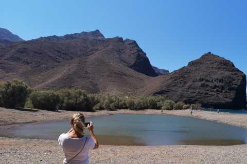 Gran Canaria: Exklusiv VIP-tur längs kusten