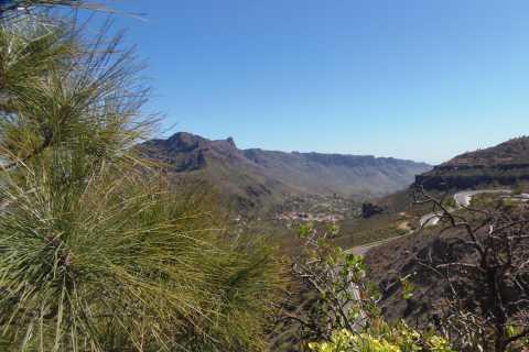 From Las Palmas: Wonders of Gran Canaria Full-Day Tour