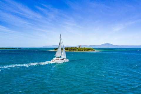 Port Douglas: Reef & Low Isles Cruise on Luxury Catamaran