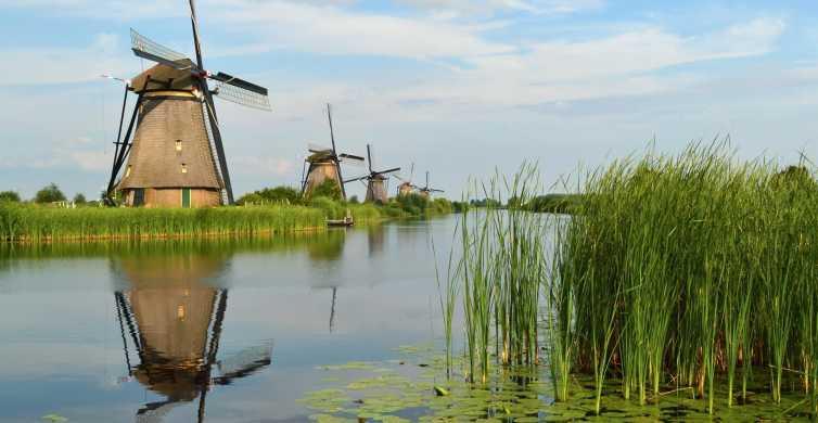 Desde Amsterdam: Tour privado de un día por Rotterdam y Kinderdijk