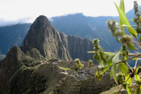 Groupe Machu Picchu en petit groupe: billet d'entrée, bus et guide