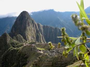 Machu Picchu Kleingruppen-Kombo: Eintritt, Bus & Guide