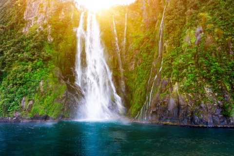 From Queenstown: Milford Sound Full-Day Trip by Plane & Boat