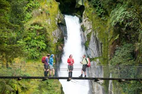 Vlucht- en wandeltocht: Milford Sound, Milford Track & Picnic