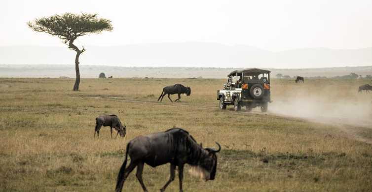Desde Johannesburgo: 1 día en Parque Nacional de Pilanesberg