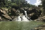 Puerto Rican Rainforest Tour with Hike, Waterfall, and Beach