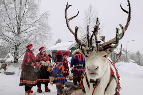 Rovaniemi: Snowmobile Safari, Reindeer and Husky Farm