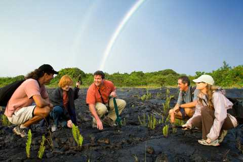 From Kona and Waikoloa: Intimate Volcano Discovery Tour
