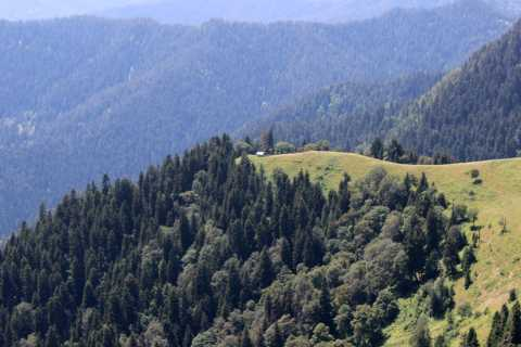 Borjomi National Park: 2-Day Hike - Lomi Mountain