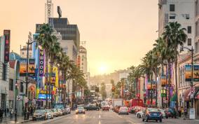 Hollywood Cannabis Tour