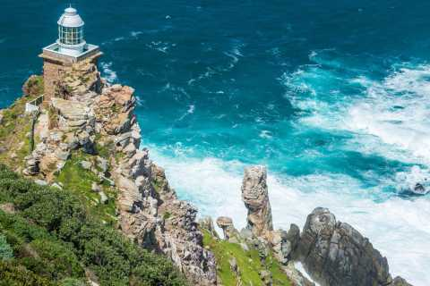 Cape Peninsula and Winelands Private Full-Day Combo Tour
