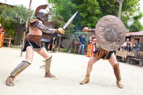 Rome: 2-Hour Gladiator School