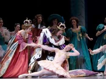 St. Petersburg: Klassische Ballett-Aufführung