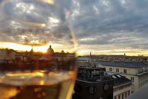Vienna: Wine Tasting Tour