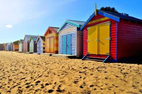 Phillip Island: ecotour de fauna salvaje en grupos reducidos