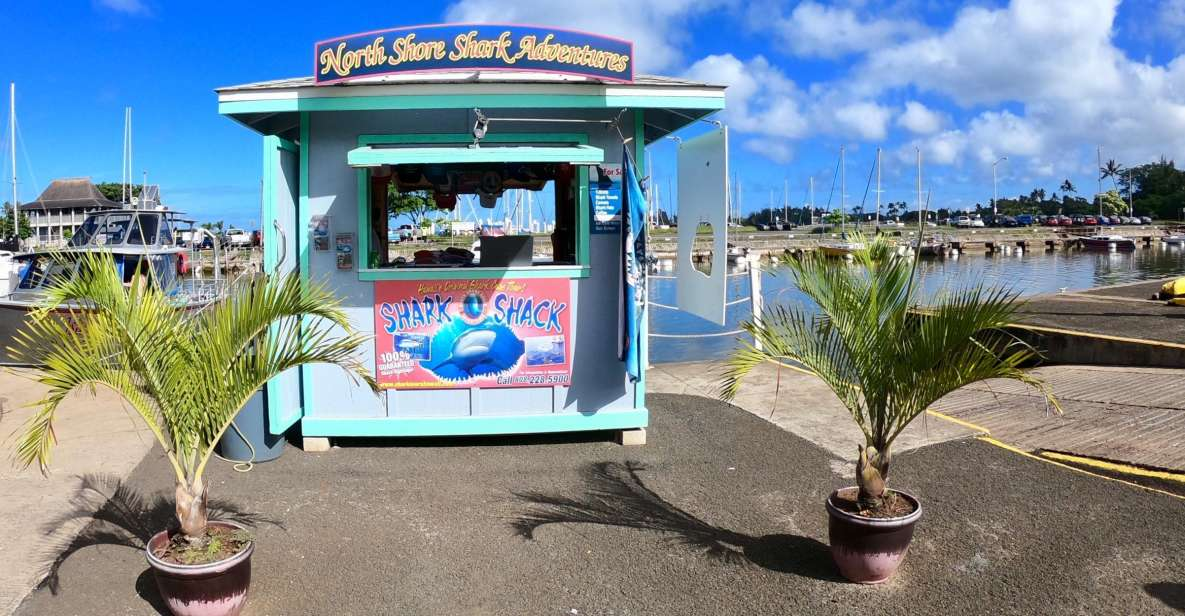 Oahu: Mergulho c/ Tubarões na Costa Norte 2 Horas