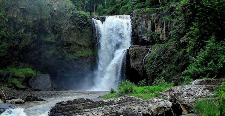 Ubud & Canggu: Rice Terrace, Waterfall & Black Sand Beach