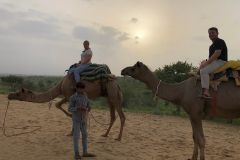 Jaisalmer: excursão de meio dia para safári de camelo