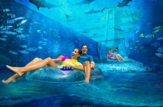 Dubai: Atlantis Aquaventure & The Lost Chambers Aquarium