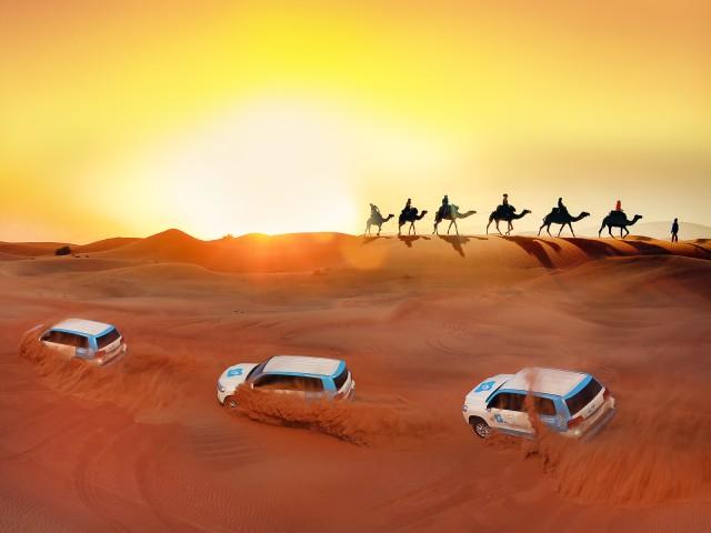 Premium Rode Duinensafari: kamelen en BBQ in Al Khayma