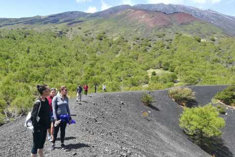 From Taormina: Half-Day Mount Etna Morning Trek