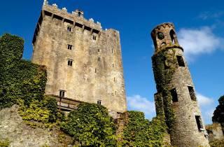Ab Dublin: Tagestour nach Cork, Cobh und Blarney Castle