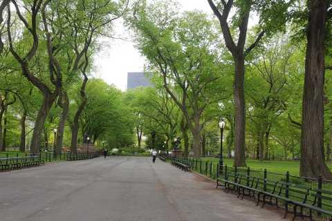 New York City: Central Park Bike Tour
