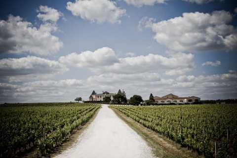 Bordeaux: an Afternoon in Margaux