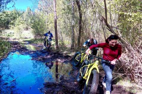 Visaginas: Swamps and Bogs Fat-Bike Tour