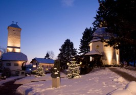 What to do in Salzburg - From Salzburg: Private Oberndorf Silent Night Christmas Tour