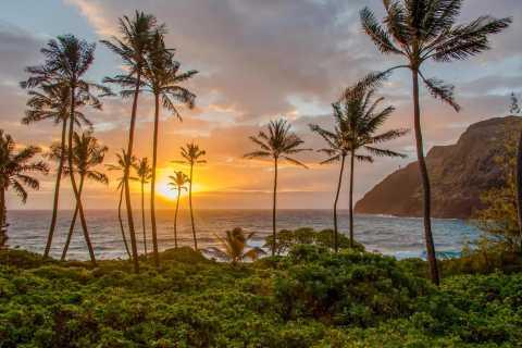 Oahu: Sunrise Photo Tour con guía profesional de fotos