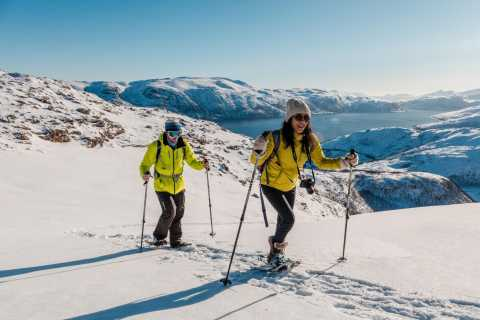 From Tromso: Small-group Snowshoeing Tour