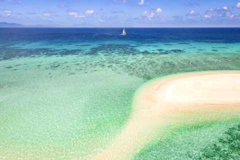 From Port Douglas: Outer Reef Cruise by Luxury Catamaran