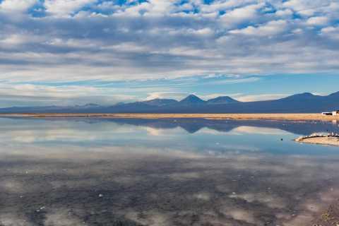 Piedras Rojas, Altiplanics Lagoons & Salar Full-Day Tour