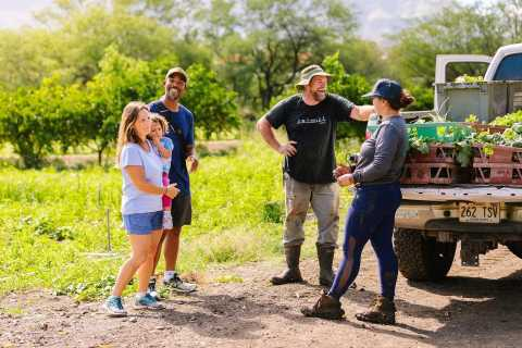 Oahu: Exclusive Farm to Forest Tour With Pickup