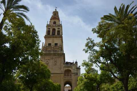 Mosque–Cathedral of Córdoba Tour with Bell Tower Access