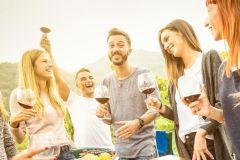 Ilha Waiheke: 3 Vineyard Winery Tour