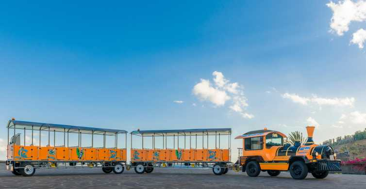Tenerife: Hop On Hop Off City Bus and Train Tour