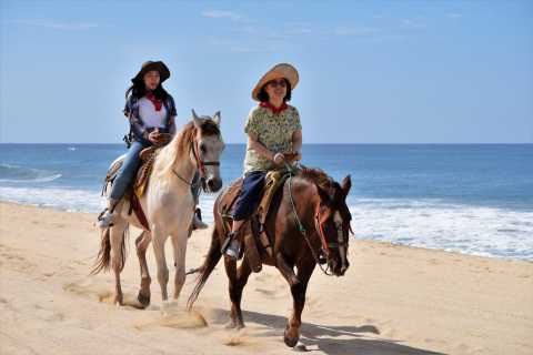 Los Cabos: Guided Horseback Ride