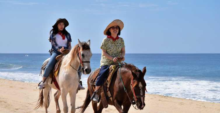 Los Cabos: Guided Horseback Ride